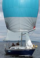 webAnnie-spinnaker-2